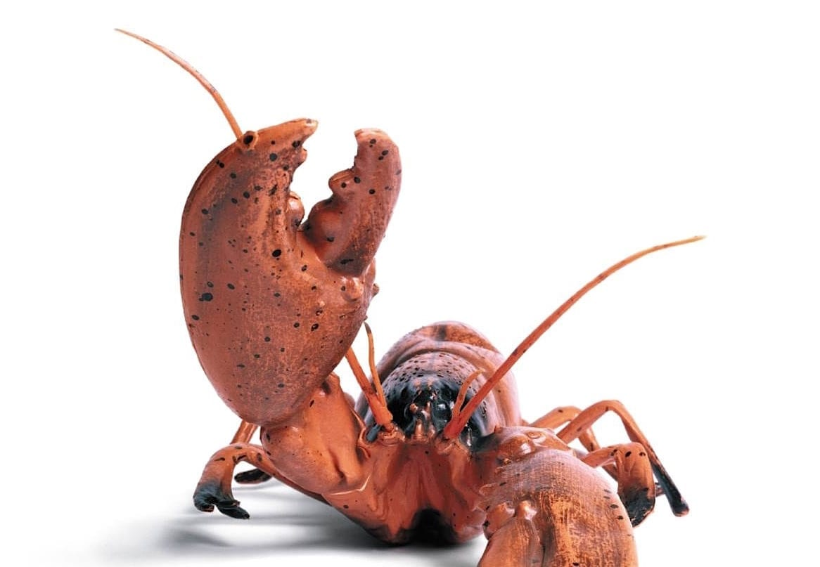 Consider the Lobster and Other Essays